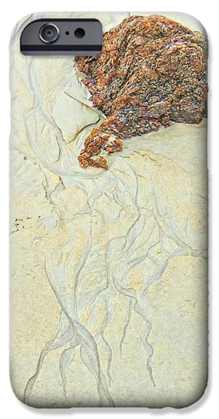 Sea iPhone Cases -  Beach Sand  2 iPhone Case by Marcia Lee Jones