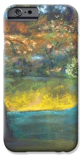 Blazing Autumn Light iPhone Case by Sandra McClure