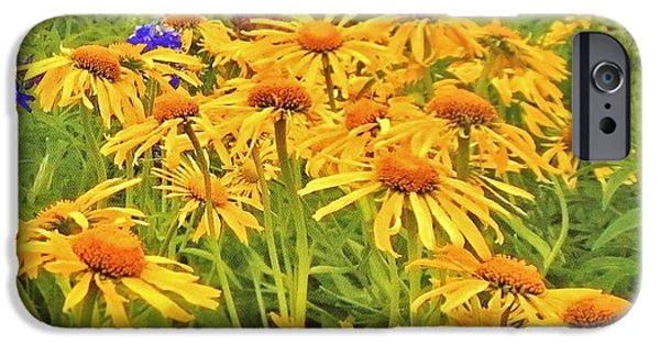Wrap Digital Art iPhone Cases -  Field of Fall Flowers iPhone Case by Marsha Heiken