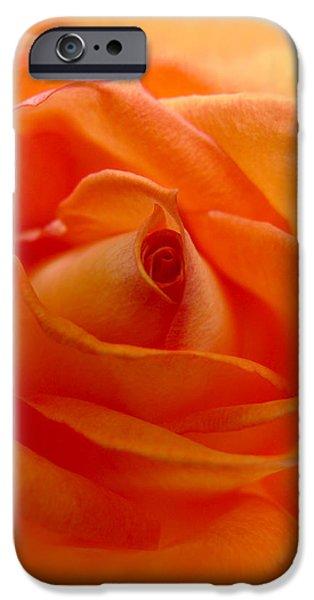 Peach Roses iPhone Cases -  Orange Swirls Rose Flower iPhone Case by Jennie Marie Schell