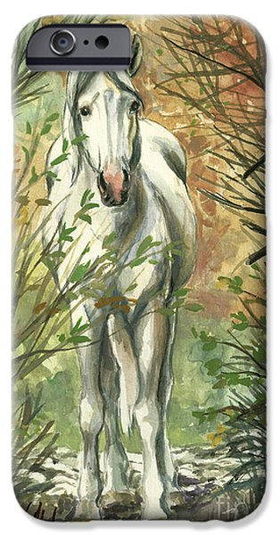 The Look Out iPhone Case by Linda L Martin