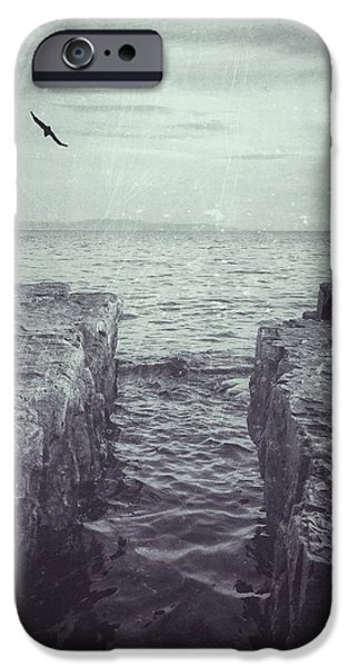 Nature Scene iPhone Cases - Vermont Lake Champlain shoreline black and white iPhone Case by Andy Gimino