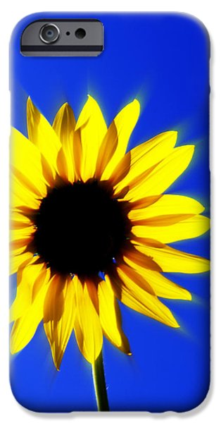 083 iPhone Case by Marty Koch