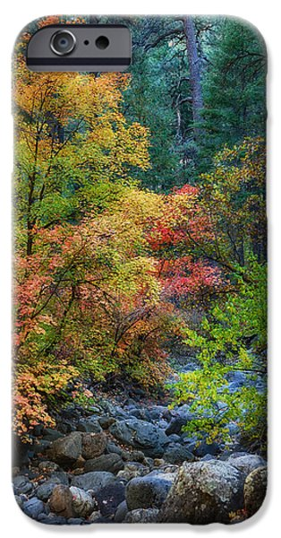 Oak Creek iPhone Cases - A Beautiful Fall Day  iPhone Case by Saija  Lehtonen