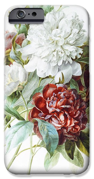 Tasteful Art iPhone Cases - A Bouquet of Red Pink and White Peonies iPhone Case by Pierre Joseph Redoute