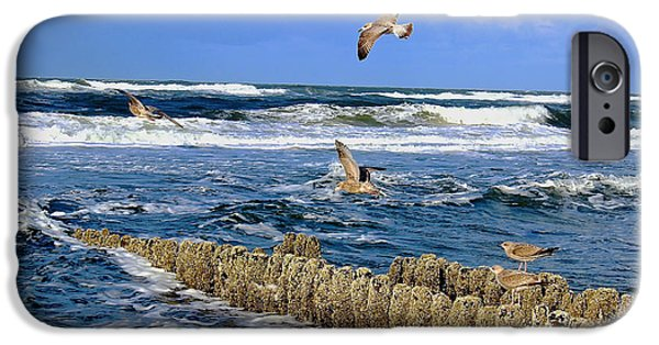 Flying Seagull iPhone Cases - A Day at the Beach iPhone Case by Mountain Dreams