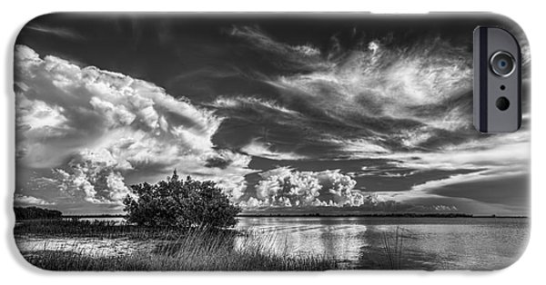 Park Scene iPhone Cases - A New Experience iPhone Case by Marvin Spates