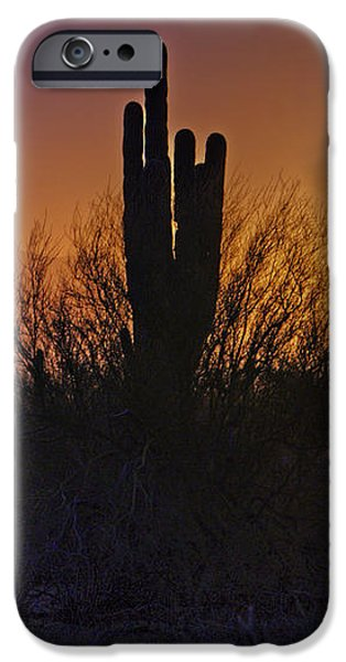 A Sonoran Morning  iPhone Case by Saija  Lehtonen