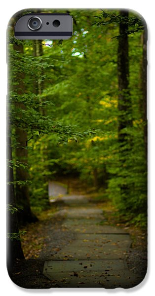 Green Path iPhone Cases - A Walk In The Woods iPhone Case by Shane Holsclaw