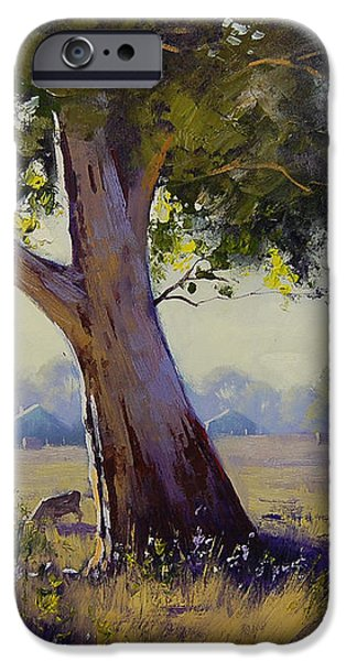 Afternoon Light Grazing iPhone Case by Graham Gercken