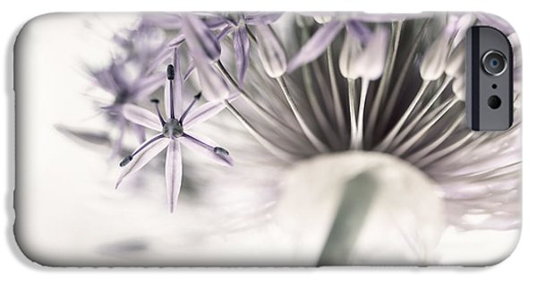 Alliums iPhone Cases - Allium flower iPhone Case by Elena Elisseeva