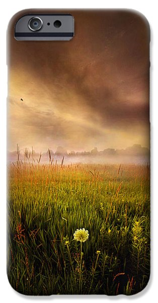 Geographic iPhone Cases - Alone iPhone Case by Phil Koch