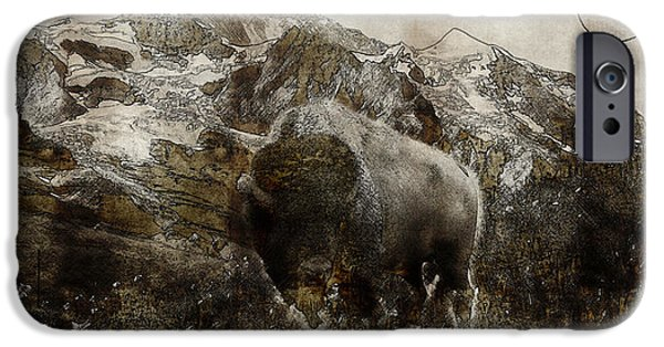 Farm Stand iPhone Cases - American Bison in the Rockies iPhone Case by Celestial Images