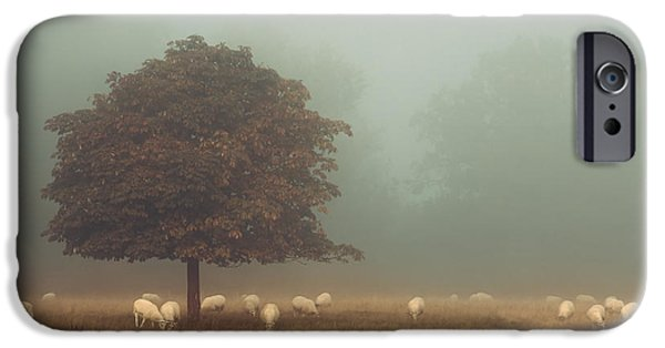 Fletcher iPhone Cases - Amongst the flock on an autumn morning iPhone Case by Chris Fletcher