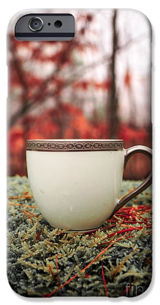Tea Party Photographs iPhone Cases - Antique teacup in the woods iPhone Case by Edward Fielding