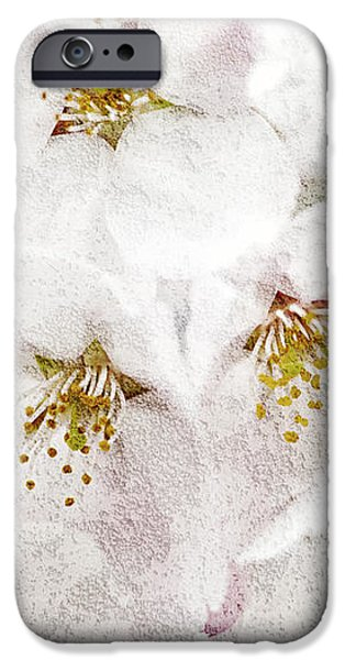 Apple blossoms iPhone Case by Elena Elisseeva