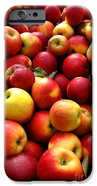 Local Food iPhone Cases - Apples iPhone Case by Olivier Le Queinec
