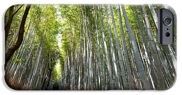 Bamboo Fence iPhone Cases - Arashiyama bamboo forest Kyoto iPhone Case by Marco Brivio