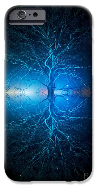 Mandala Photographs iPhone Cases - As Above So Below iPhone Case by Tim Gainey