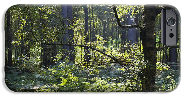 Milton Keynes iPhone Cases - Aspley woods iPhone Case by David Isaacson