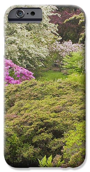 Asticou Azelea Garden - Northeast Harbor - Mount Desert Island - Maine iPhone Case by Keith Webber Jr