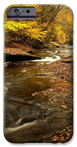 Tree Roots iPhone Cases - Autumn and Creek iPhone Case by Amanda Kiplinger