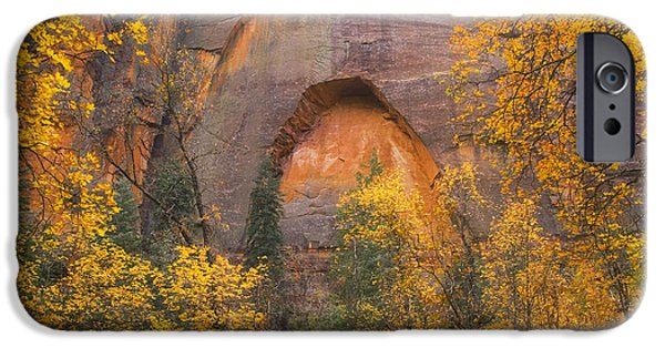West Fork Photographs iPhone Cases - Autumn Arch iPhone Case by Peter Coskun