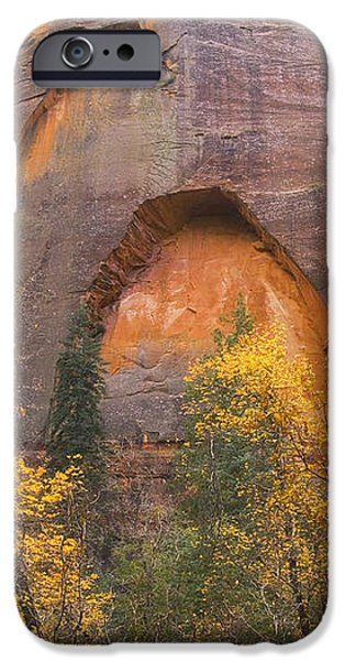 Autumn Arch iPhone Case by Peter Coskun