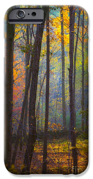 Autumn Foliage Photographs iPhone Cases - Autumn in Connecticut iPhone Case by Diane Diederich