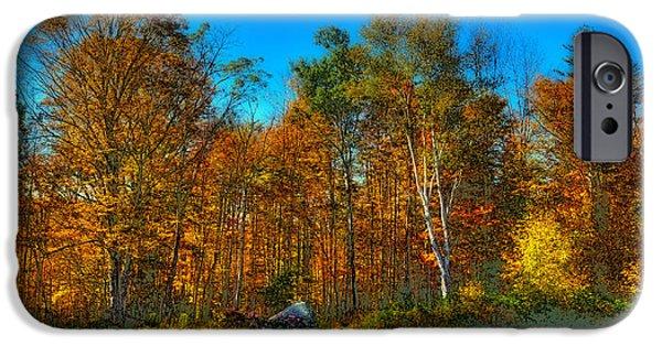 Surreal Landscape iPhone Cases - Autumn Landscape iPhone Case by David Patterson