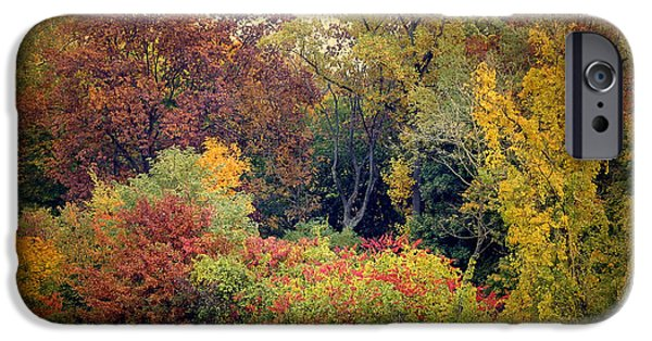 Autumn Digital iPhone Cases - Autumn Tapestry iPhone Case by Jessica Jenney