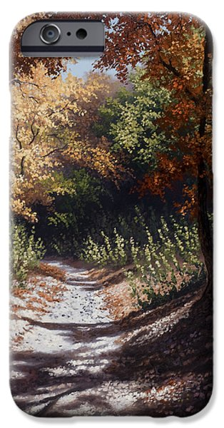 Kyle Wood iPhone Cases - Autumn Trails iPhone Case by Kyle Wood