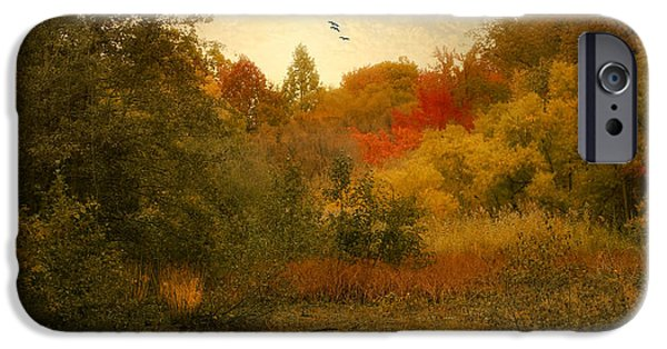 Autumn iPhone Cases - Autumn Wetlands iPhone Case by Jessica Jenney