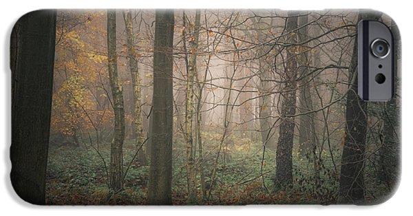 Autumn iPhone Cases - Autumn woodland iPhone Case by Chris Fletcher