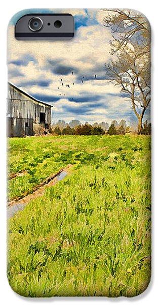 Back Roads of Kentucky iPhone Case by Darren Fisher