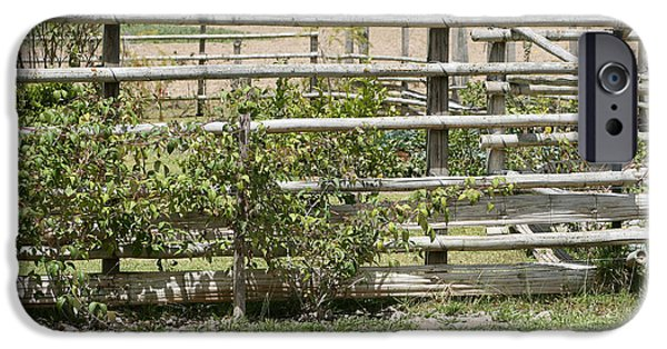 Bamboo Fence iPhone Cases - Bamboo Fence in a Pasture iPhone Case by Robert Hamm