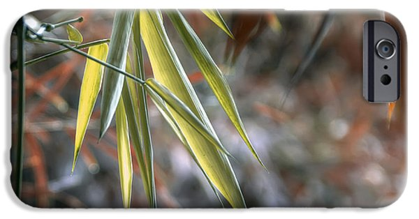Bamboo Leaves iPhone Cases - Bamboo Leaves iPhone Case by Wayne Sherriff