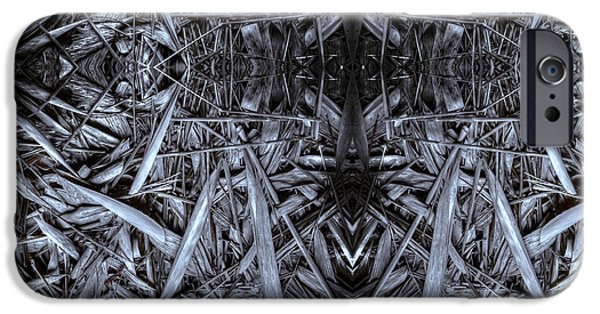 Bamboo Leaves iPhone Cases - Bamboozled iPhone Case by Wayne Sherriff