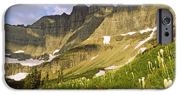 Snow iPhone Cases - Beargrass Xerophyllum Tenax iPhone Case by Panoramic Images