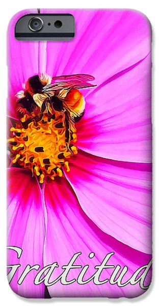 Fuzzy Digital iPhone Cases - Bee on Pink - Gratitude iPhone Case by Bill Caldwell -        ABeautifulSky Photography