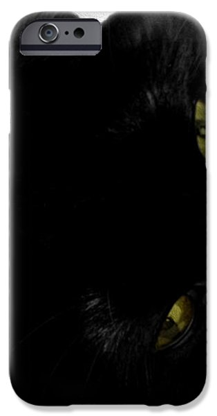 Beethoven iPhone Case by Cheryl Young