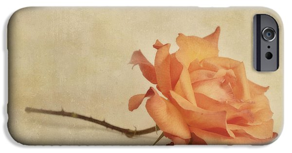 Roses iPhone Cases - Bellezza iPhone Case by Priska Wettstein