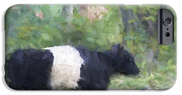 Oreo iPhone Cases - Belted Galloway Cow Painterly Effect iPhone Case by Carol Leigh