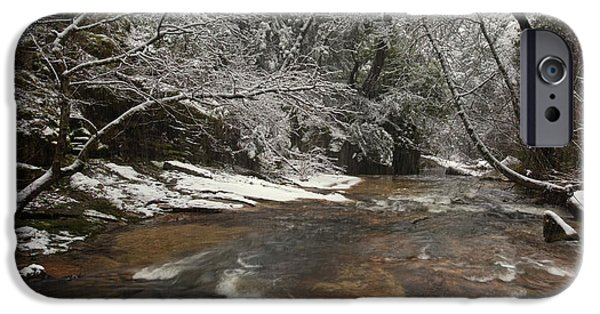 Winter Storm iPhone Cases - Berry Creek In Winter iPhone Case by Ron Sanford