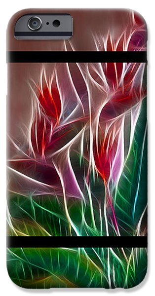 Morphed iPhone Cases - Bird of Paradise Fractal iPhone Case by Peter Piatt