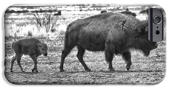 New Attitudes iPhone Cases - Bison Mother and Calf iPhone Case by Melany Sarafis