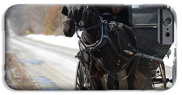 Horse And Buggy iPhone Cases - Black Beauty iPhone Case by Linda Mishler