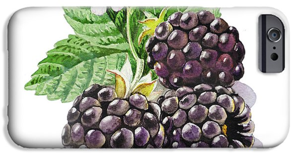 Berry iPhone Cases - ArtZ Vitamins Series The Blackberries iPhone Case by Irina Sztukowski
