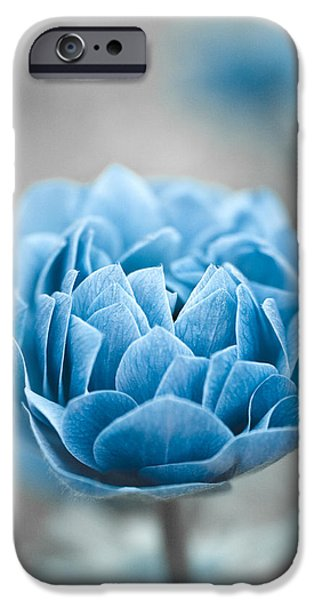 Silver Turquoise iPhone Cases - Blue Flower iPhone Case by Frank Tschakert