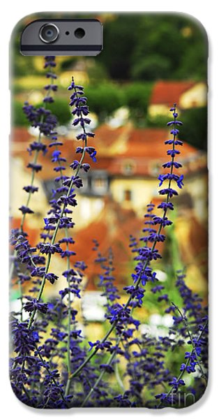 Rooftop iPhone Cases - Blue flowers and rooftops in Sarlat iPhone Case by Elena Elisseeva